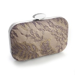 Lacey Evening Minaudiere with Champagne Shimmer